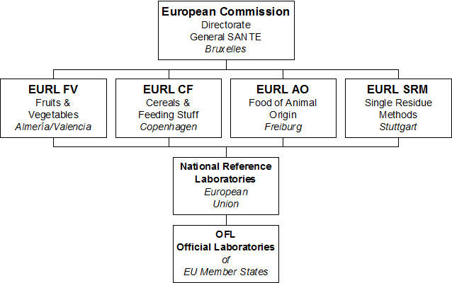 EURL Network