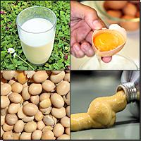 verschiedene Allergene: Milch, Ei, Soja, Senf