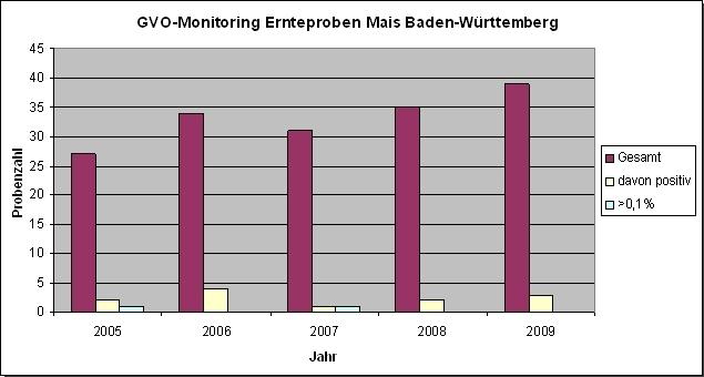 GVO-Monitoring Ernteproben Mais Baden-Württemberg