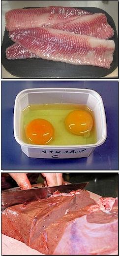 Fisch, Eier Leber