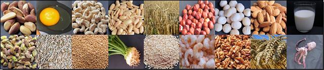 Fotoreihe verschiedener allergener Lebensmittel