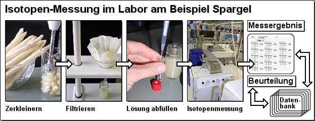 Isotopen-Messung im Labor am Beispiel Spargel