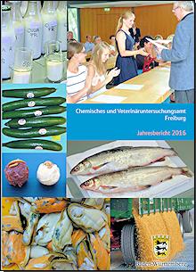 Die Broschüre zum Jahresbericht 2016