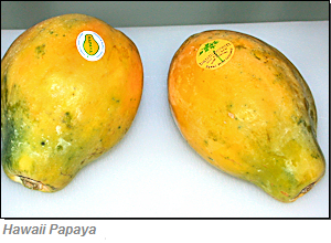 Papaya Hawaii
