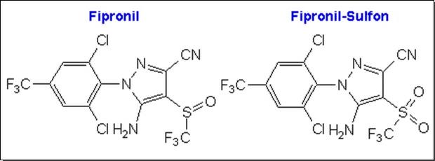 Strukturformeln Fipronil