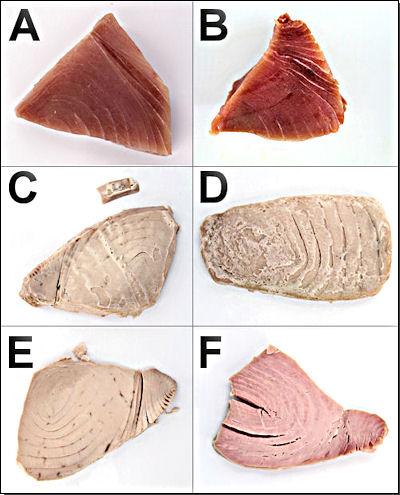 Vergleich unbehandelte/behandelte Thunfischfilets