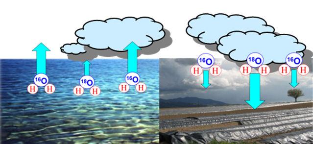 Niederschlagswasser prägt das Isotopenverhältnis