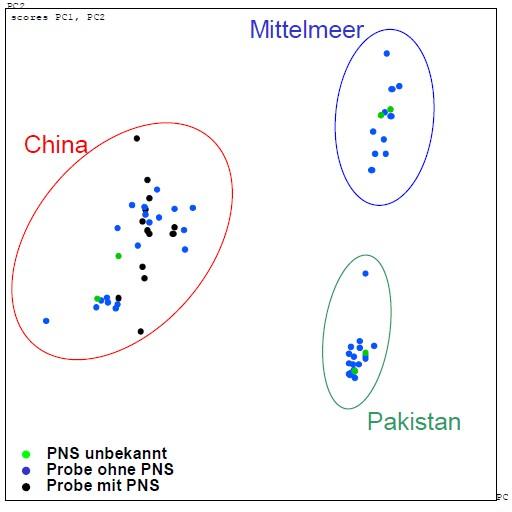 Statistische Auswertung (sog. Hauptkomponentenanalyse) aus 1H-NMR-Messdaten von 73 untersuchten Pinienkernproben