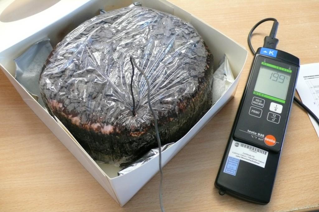 Das Bild zeigt den Thermofühler eines Temperaturmessgerätes, der in einer Torte steckt.