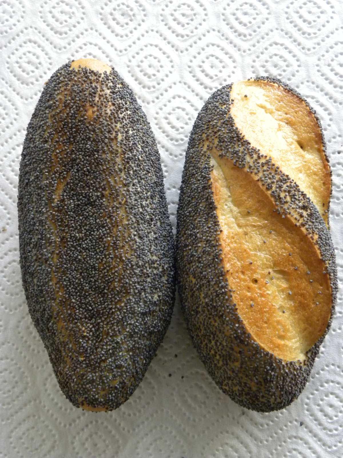 Bild von zwei Mohnbrötchen.
