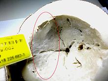 Kokosmark mit weißem, schmierigem Belag.