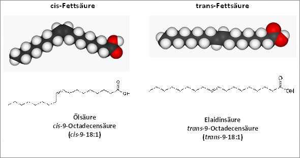 wie entstehen transfette
